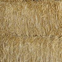 Miscellaneous Straw